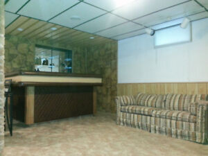 1 Bedroom + Den basement Apartment Available from Today !!