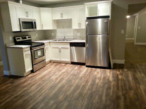 Beautiful bright new 2 bedroom basement suite everything include