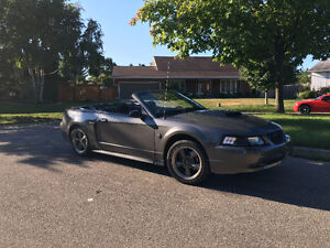 2004 Ford Mustang GT Convertible