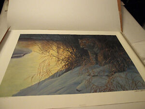 Robert Bateman Siberian Tiger ltd edition print