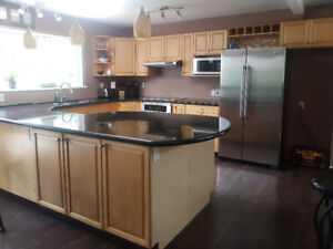 Kitchen cabinets and granite countertop