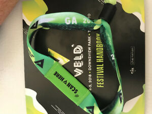 2 Day General Admission Pass for Veld