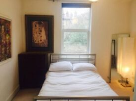 AMAZING ROOM!! NATIONAL RAIL, DLR.... XL double rooms available, CLOSE to Stratford Station