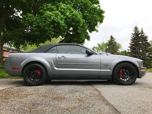 Ford Mustang Convertible - LOW KMS