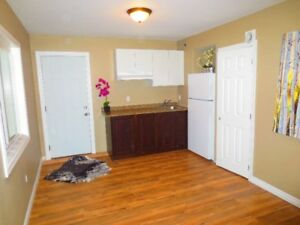 upscale batchelor apartment for rent
