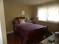 Room for Rent in New River Beach