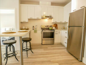 Renovated 2 Bedroom - new stainless steel appliances