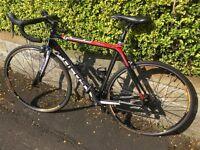 Focus Carbon Road Bike
