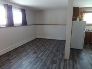 1 Bedroom Suite - Available May 1, 2018
