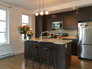 Condo 3-1/2 with parking in Montreal (Pointe-St-Charles)