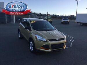 2014 Ford Escape S St. John's Newfoundland image 6