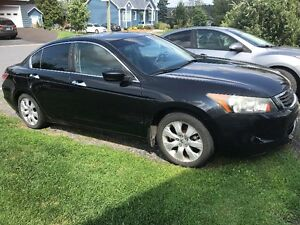 2008 Honda Accord V6  Berline