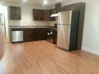 All inclusive near new large 2 bdrm suite