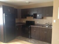Beautiful St.James Apartment for rent- July 15th