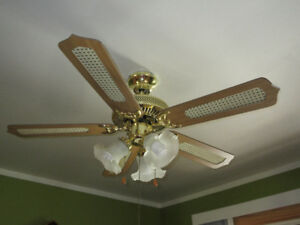 "39"" Ceiling Fan and Light"