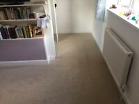 Carpet fitter vinyl and laminate