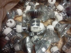 Halogen Bulbs for Pot Lights