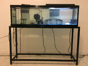 45 GALLON FISH TANK WITH STAND AND ACCESSORIES