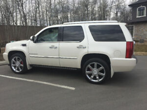 2007 Cadillac Escalade ALL RECORDS, ALL OPTIONS