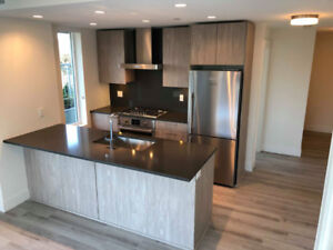 Beautiful, brand new 2 BR, 2 bath  - Available Jan 1st or sooner