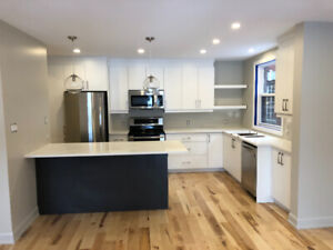 New Fully Renovated Luxury Glebe Two Bedroom Two Bath