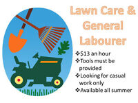 Looking to do casual lawn care and general labour