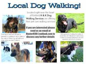 Affordable Local Dog Walking In Kirkfield!
