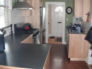 Share Nice House Downtown with One Other $225/wk