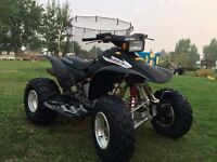 2006 Honda TRX 300 For Sale