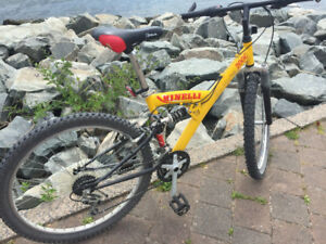 Minnelli Mountain Bike
