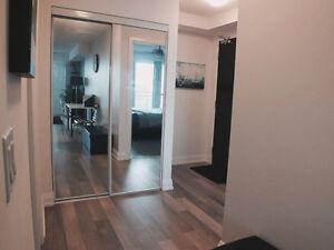 Luxury 1 Bedroom + 1 Bathroom Condo for Rent in Richmond Hill