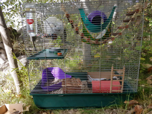 Anyone looking for a larger rodent cage?