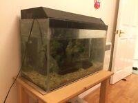Aquarium for sale
