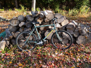Triumph Adult Bicycle Made In Canada