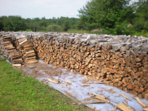 Firewood – Get it Before Winter