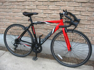 Selling my Aluminum 14 Speed Bicycle
