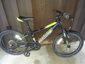 "Kids 20"" Cannondale mountain bike"