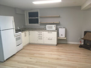 Rent a floor of a safe newly updated South End