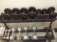 Weights and Benches for sale