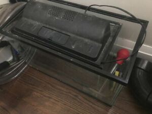 5.5gallon aquarium with lid & 10 gallon fish tank without hood