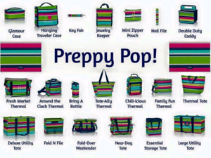 Wanted: Thirty-One Preppy Pop