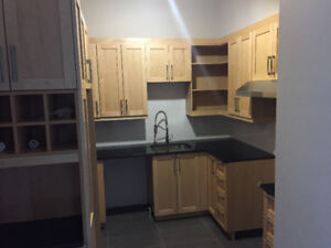 2 BED RENOVATED LAST YEAR! Minutes from canal, POINTE-ST-CHARLES