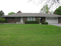 Two Bedroom Basement Apartment with Large Windows and Yard