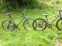 His and Hers Carrera Mountain Bikes
