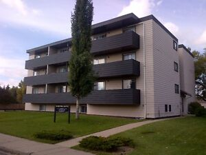 LARGE Suite - HUGE BALCONY,  1 BDRM, ONE MONTH FREE