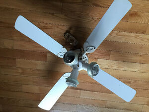 Couple of Ceiling Fans