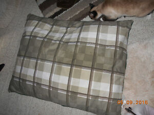 Lots of Pet Beds, Large and Small,