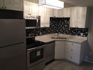 Available Nov.1st. 2 bedroom basement suite in Evergreen