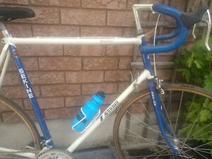Classic Sekine MR300 12-speed - Great Condition