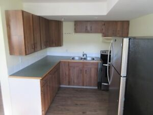 Large 1 bedroom basement suite in thickwood